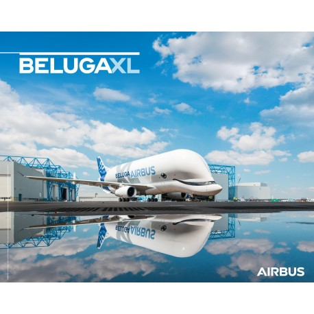 BELUGAXL poster ground view