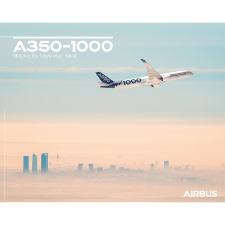 A350 1000 poster flight view