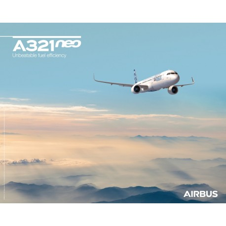 A321neo poster sky view